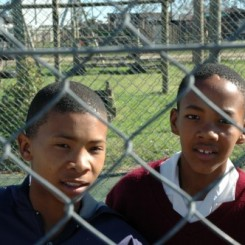boys behind fence